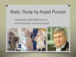 Genetically modified food persuasive speech FC