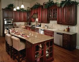 Kitchen Cabinet Decor Ideas by Cute Wooden Kitchen Cabinets Greenvirals Style