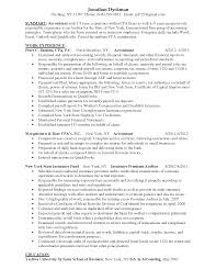 Chief Accountant Resume Sample Sample Resume For Branch Accountant Templates