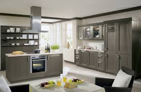 Best Kitchen Designs In The World by Traditional Gray Kitchen Cabinets Modern Gray Kitchen Cabinets