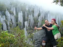Sabah Borneo Forum - Portal* Images?q=tbn:ANd9GcQOI0C973QF1visgx02fxT4QsjGWnwpij1GRorVGnL52I5jyXfe