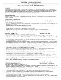 Research Analyst Sample Resume by Download Credit Administration Sample Resume