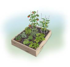 Planning A Raised Bed Vegetable Garden by Easy 4 X 4 Summer Garden Bonnie Plants