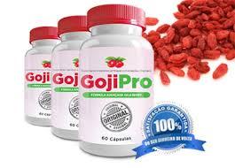 Goji Pro Emagreça 27kg em 3 meses