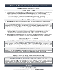 Best Executive Resume Writer   Sample Resume COO  amp  GM   Resume     An Expert Resume