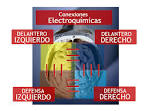 como &quot;<b>dominancia cerebral</b>