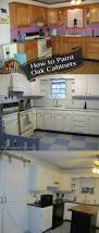 100 old kitchen cabinet makeover painting kitchen cabinets