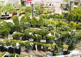 garden center pleasant valley