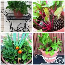 small garden design ideas archives the micro gardener
