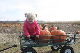find corn mazes in indiana longest and best corn mazes and