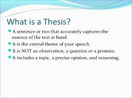 a thesis statement offers