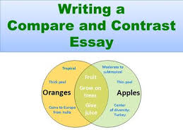 Compare Contrast Essays Choices for Organization Transition Words     SlidePlayer