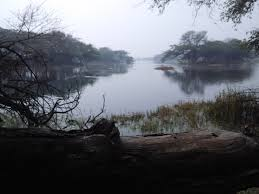 Sultanpur National Park