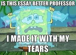 Essay writing on my college life FAMU Online