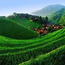 اجمل الاماكن في العالم images?q=tbn:ANd9GcQ