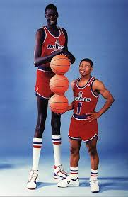Bol and Bogues