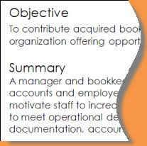 Sample Objectives In Resume For It by Resume Writing Objectives Summaries Or Professional Profiles