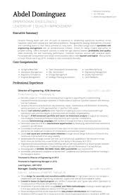 Director Of Operations Resume Sample by Director Of Engineering Resume Samples Visualcv Resume Samples