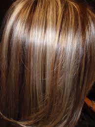 Light Brown Hair With Lowlights Low Lights Of Chocolate Brown In