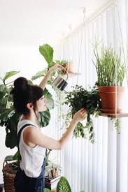 it u0027s no secret we love adding plants to our indoor spaces every