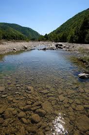 Putna River