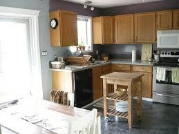 Painted Kitchen Floor Ideas Attractive Painted Kitchen Cabinet Ideas
