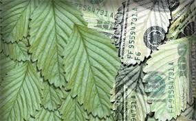 Economía verde, marcada por matices negros