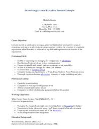 Account Director Resume  manager resume template  operations     happytom co