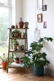 plant stand indoor window garden plants floor plant stands