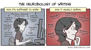 PHD Comics  The Neurobiology of Writing PHD Comics