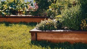 Planning A Raised Bed Vegetable Garden grow a vegetable garden in raised beds