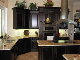 Kitchen Refacing Ideas by Kitchen Contemporary Kitchen Cabinet Refacing Ideas With Black