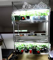 indoor light hps grow lights for indoor plants clean however the
