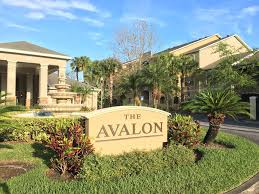 apartment the avalon at clearwater clearwater beach fl booking com