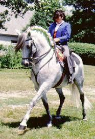 Mis amores los caballos Images?q=tbn:ANd9GcQ_10S2--_BD8L2DbMeKRiR_lu9V0NEmu-PHt2YeDRHVYLnXuo&t=1&usg=__HSjiSYTISEnoAWKp5nRSywBecGs=