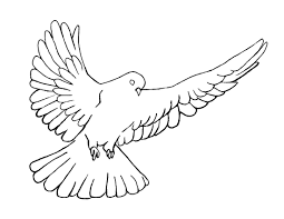 dove of peace coloring page 27834 bestofcoloring com