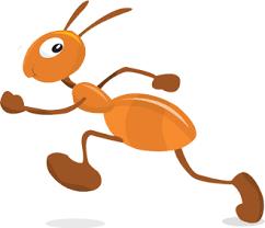 فوائد قرصة النمل images?q=tbn:ANd9GcQ