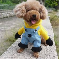 Winnie Pooh Dog Halloween Costume Cheap Funny Cat Dogs Aliexpress Alibaba Group