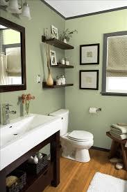 Bathrooms Renovation Ideas Colors Best 25 Green Bathroom Colors Ideas On Pinterest Green Bathroom