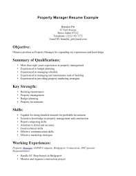 general resume summary examples resume experience summary examples valuable design ideas resume resumes skills section skill section resume example skill section