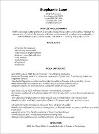 Examples Of Professional Summary For Resume by Professional Auditor Resume Templates To Showcase Your Talent