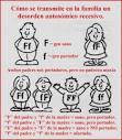 los <b>genes recesivos</b> a la
