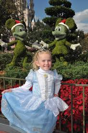 Tips For A Dazzling Smile by Tips For Dressing Your Daughter As A Princess At Disney World