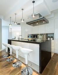 Zebra Wood Kitchen Cabinets 75 Modern Kitchen Designs Photo Gallery Designing Idea