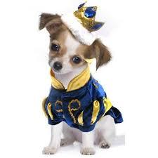 Dog Costumes Halloween 83 Dog Costumes Images Pet Costumes Animal