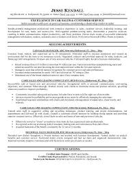 Great Executive Resume Samples   Resume and Cover Letter Writing     Great Executive Resume Samples Executive Resume Samples Professional Resume Samples Guaranteed Interviews And Professional Resume Writing