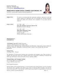 Resume Application For Job by Resume For Job Application Information Technology It Cover Letter