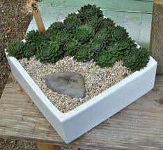 Rock Garden Plants Uk by Google Image Result For Http Nadiaknowsgardens Files Wordpress