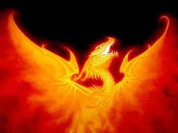 Byakuran el Dragón durmiente..... Images?q=tbn:ANd9GcQedFWIl36OU-lnQDhHf96g78Vyu9OMuhC1hmQfnOdkOa2JLn7w