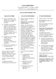 sales resume skills diaster   Resume And Cover Letters